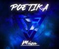 Poetika - Múza