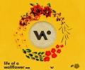 Whethan feat. Honne - Radar