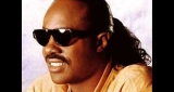 I Just Called To Say I Love You Stevie Wonder