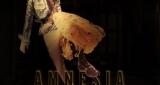 Amnesia Roxen