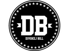 Divokej Bill - Jaro