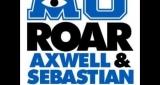Roar Axwell & Ingrosso