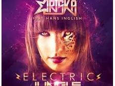 Dj Oriska feat. Hans Inglish - Electric Jungle