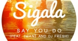 Say You Do Sigala feat. Imani, DJ Fresh