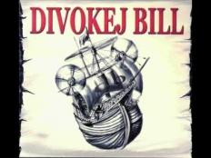 Divokej Bill - Pocit