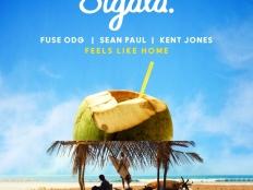 Sigala & Fuse ODG & Sean Paul feat. Kent Jones - Feels Like Home