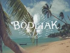 Zdenka Predná - Bodliak