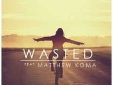 Tiesto feat. Matthew Koma - Wasted