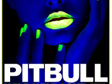 Pitbull feat. GRL - Wild Wild Love