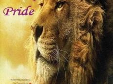 Mark Pride - Narnia 2011 (Radio Edit)