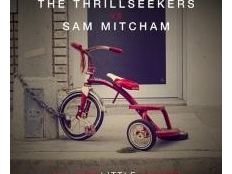 The Thrillseekers vs. SAM MITCHAM - ALL THE LITTLE THINGS
