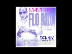 Flo Rida Feat. Sia - Wild Ones (Miami Life remx)