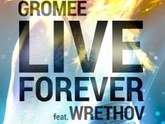 Gromee feat. Wrethov - Live Forever