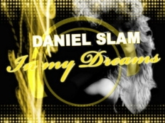 Daniel Slam - In My Dreams (2-4 Grooves Remix)