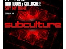 FLYNN & DENTON and Audrey Gallagher - SAY MY NAME