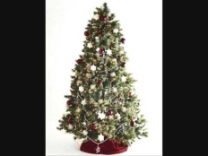 Petr Kotvald - Vánoce hrajou Gloria