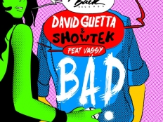 David Guetta feat. Showtek & Vassy - Bad