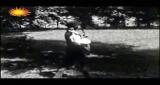 S písní lesů, vod a strání Petr Rezek