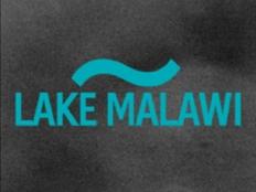 Lake Malawi - Aubrey