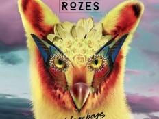 Galantis & Rozes - Girls on Boys