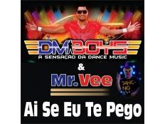 DM Boys & Mr.Vee - Ai Se Eu Te Pego