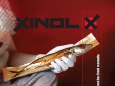 Xindl X - Dysgrafik
