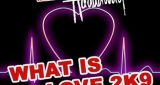 What Is Love 2k9 Klaas feat. Haddaway