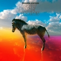 Scissor Sisters - Only The Horses