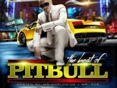 Pitbull pres. La Familia - Noche De Placer