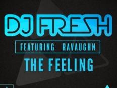 DJ Fresh feat. RaVaughn - The Feeling