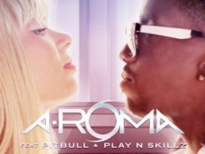 A-Roma feat. Pitbull & Play-N-Skillz - 100% Freaky