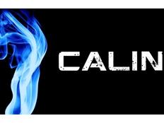 Calin - Time Of Your Life (David Guetta edit)