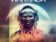 Dimitri Vegas and Like Mike - Wakanda