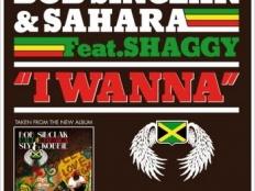 Bob Sinclar feat. Sahara & Shaggy - I Wanna