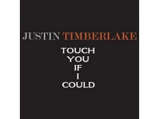 Justin Timberlake - Touch You If I Could