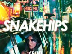 Snakehips feat. Zayn - Cruel