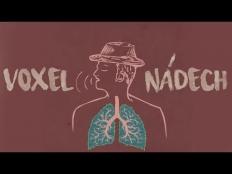 Voxel - Nádech
