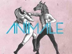 Don Diablo feat. Dragonette - Animale