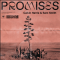 Calvin Harris feat. Sam Smith - Promises