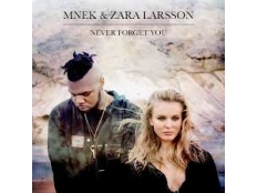 MNEK feat. Zara Larsson - Never Forget You